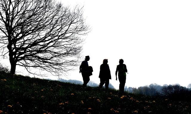 Step out health walk Bocking